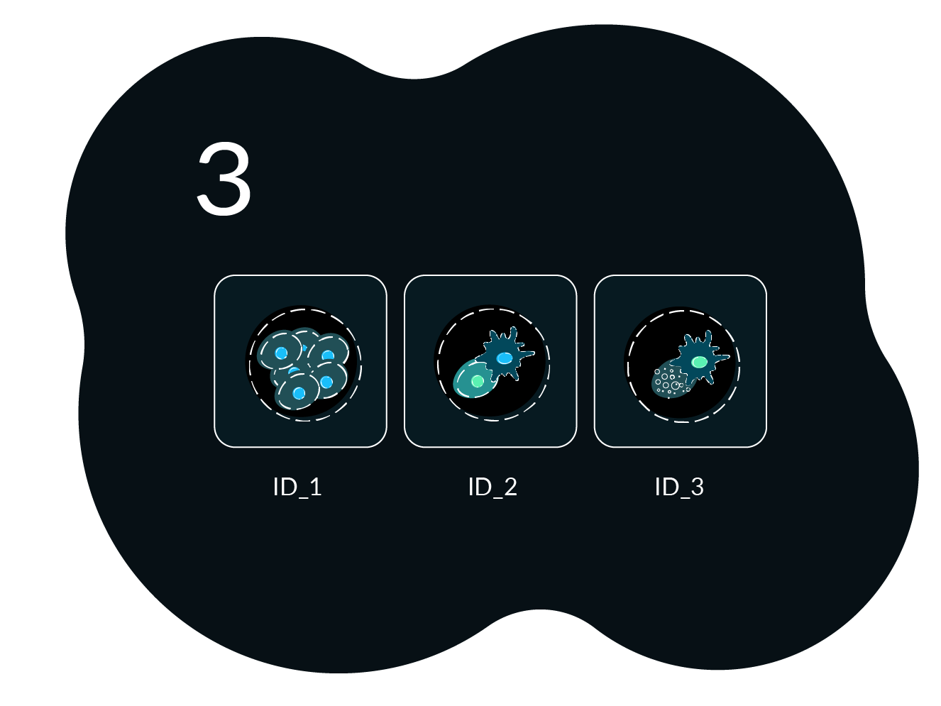 Workflow Image 3 Cell Culture