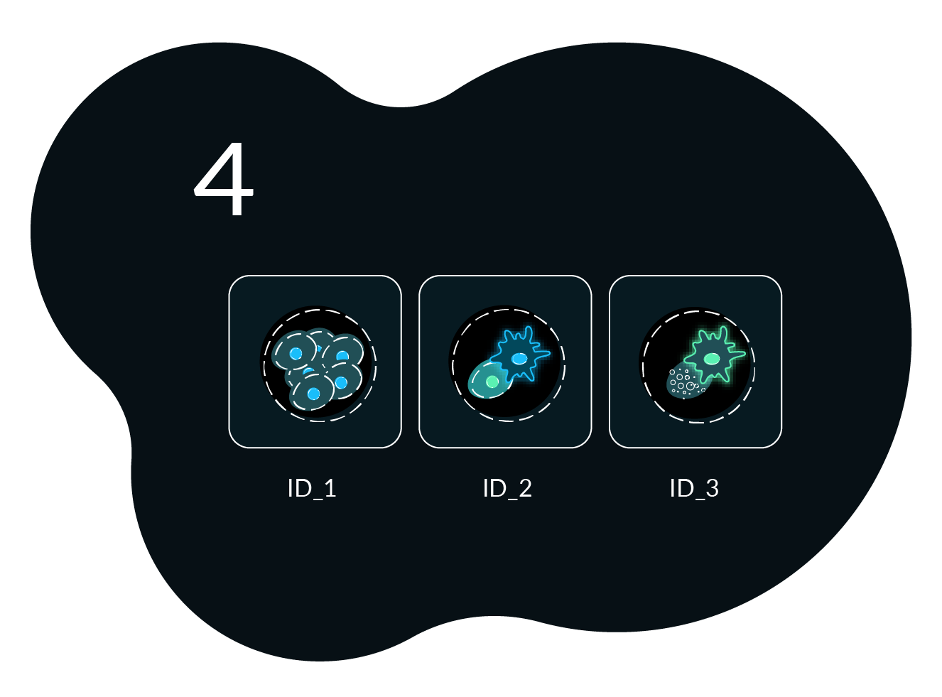 Workflow Image 4 Cell Analysis